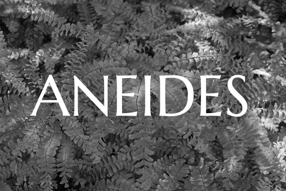 Aneides
