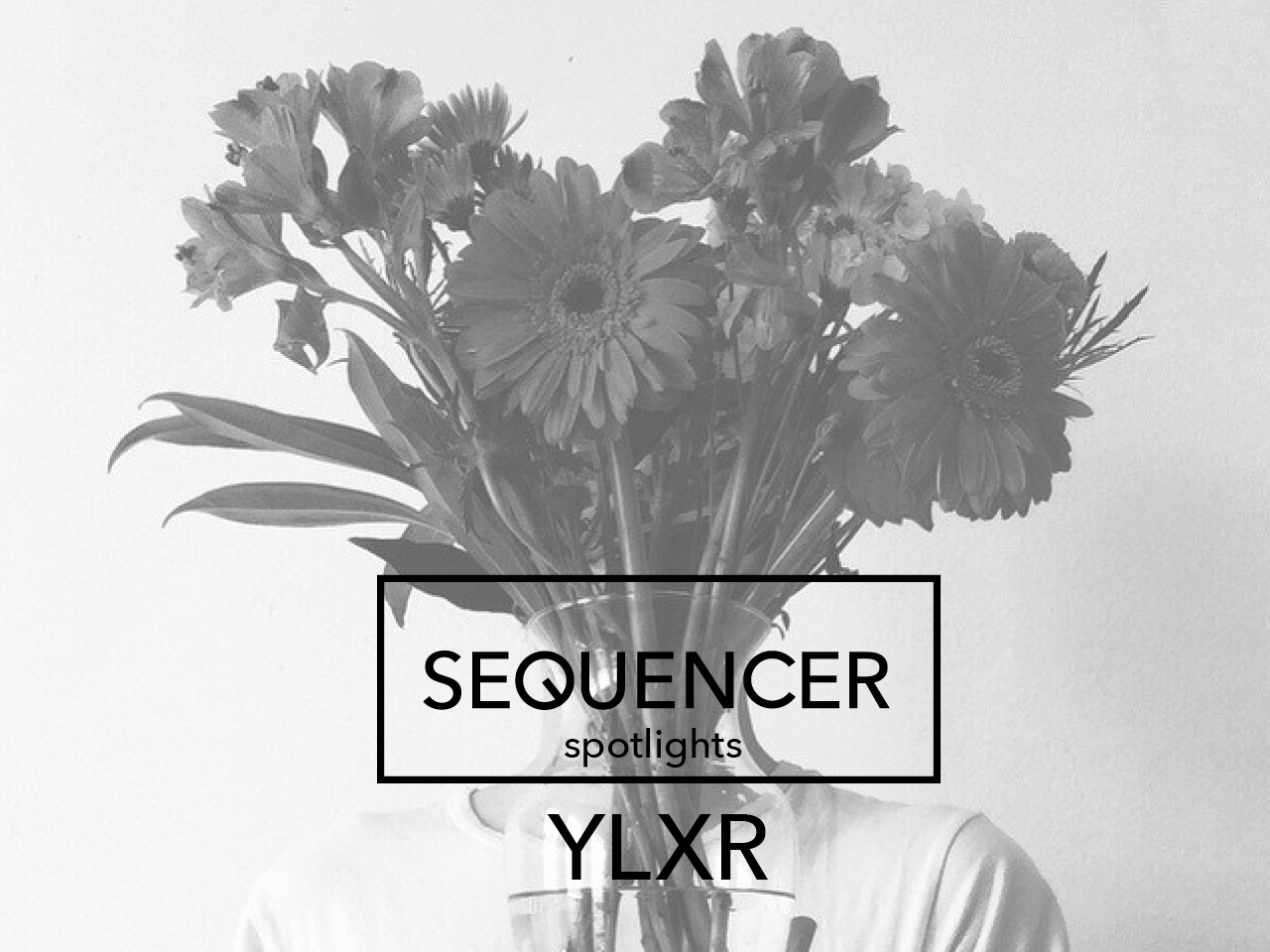 sequencer_spotlight_ylxr2